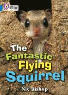 The Fantastic Flying Squirrel: Band 04/Blue - Nic Bishop - cover