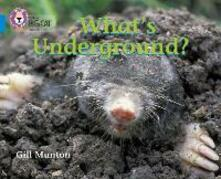 What's Underground: Band 04/Blue - Gill Munton - cover