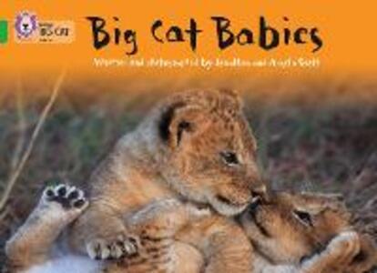 Big Cat Babies: Band 05/Green - Jonathan Scott,Angela Scott - cover