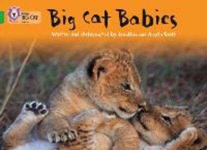 Libro inglese Big Cat Babies: Band 05/Green Jonathan Scott , Angela Scott