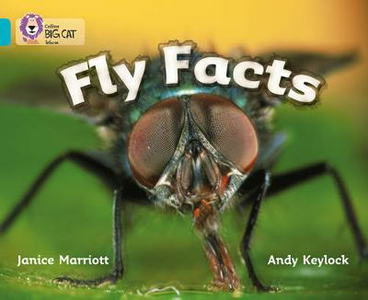 Libro in inglese Fly Facts: Band 07/Turquoise  - Janice Marriott