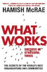 What Works: Success in Stressful Times - Hamish McRae - cover