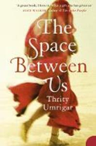 The Space Between Us - Thrity Umrigar - cover