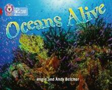 Oceans Alive: Band 14/Ruby - Angie Belcher - cover