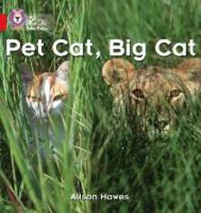 Pet Cat, Big Cat: Band 02a/Red a - Alison Hawes - cover