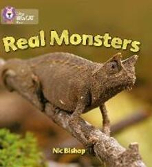 Real Monsters: Band 03/Yellow - Nic Bishop - cover