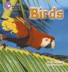 Birds: Band 04/Blue - Jilly McLeod - cover