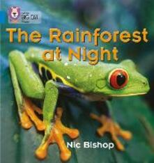 The Rainforest at Night: Band 04/Blue - Nic Bishop - cover