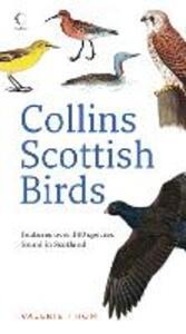 Collins Scottish Birds - Valerie Thom - cover