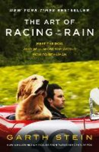 Ebook in inglese Art of Racing in the Rain Stein, Garth
