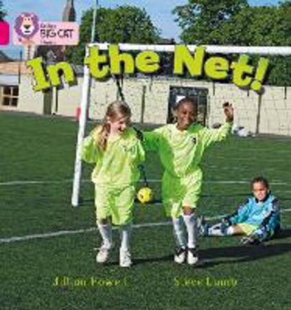 In the Net!: Band 01b/Pink B - Jillian Powell,Steve Lumb - cover