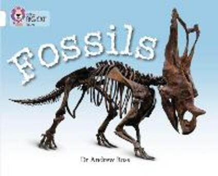 Fossils: Band 10/White - Dr Andrew Ross - cover