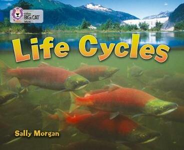 Life Cycles: Band 16/Sapphire - Sally Morgan - cover