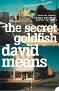 Ebook in inglese Secret Goldfish Means, David