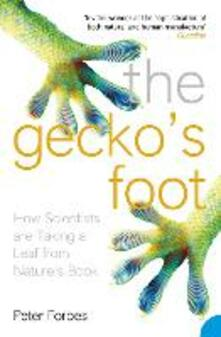 Gecko's Foot: How Scientists are Taking a Leaf from Nature's Book