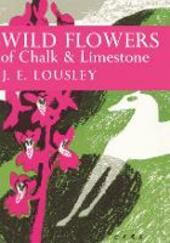 Wild Flowers of Chalk and Limestone