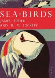 Foto Cover di Sea-Birds, Ebook inglese di James Fisher,R. M. Lockley, edito da HarperCollins Publishers