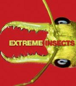 Ebook in inglese Extreme Insects Jones, Richard