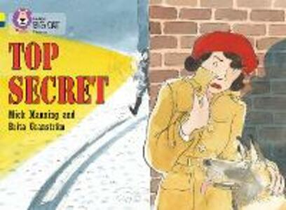 Top Secret: Band 03 Yellow/Band 16 Sapphire - Mick Manning,Brita Granstrom - cover