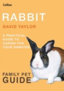 Rabbit - David Taylor - cover