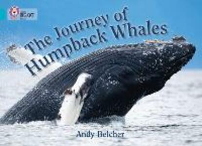 The Journey of Humpback Whales: Band 07/Turquoise - cover