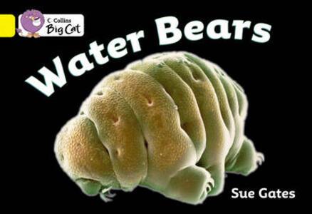 Water Bears Workbook - cover