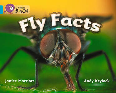 Fly Facts Workbook - cover