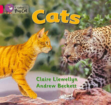 Cats Workbook - cover