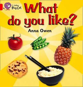 What Do You Like? Workbook - cover