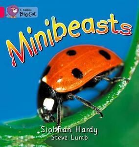 Minibeasts Workbook - cover