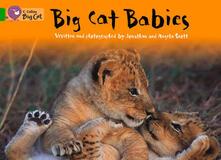 Big Cat Babies Workbook - cover