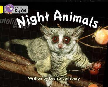 Night Animals: Yellow/ Band 3 - Louise Spilsbury - cover
