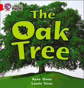 The Oak Tree: Band 02b/Red B - Anna Owen - cover