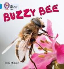 Buzzy Bees: Band 04/Blue - Sally Morgan - cover