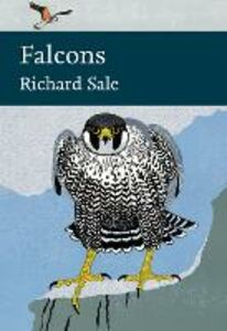 Ebook in inglese Falcons Sale, Richard