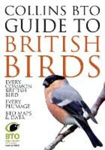 Collins BTO Guide to British Birds - Paul Sterry,Paul Stancliffe - cover