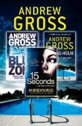 Andrew Gross 3-Book Thriller Collection 2