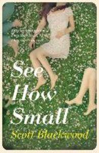 Foto Cover di See How Small, Ebook inglese di Scott Blackwood, edito da HarperCollins Publishers