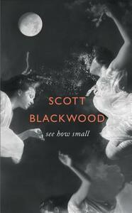 See How Small - Scott Blackwood - cover