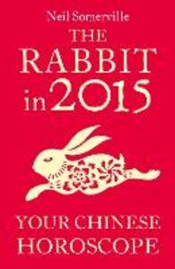 Foto Cover di The Rabbit in 2015, Ebook inglese di Neil Somerville, edito da HarperCollins Publishers