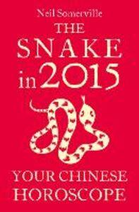 Foto Cover di The Snake in 2015, Ebook inglese di Neil Somerville, edito da HarperCollins Publishers