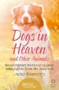 Dogs in Heaven: and Other Animals: Extraordinary Stories of Animals Reaching out from the Other Side - Jacky Newcomb - cover