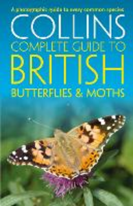 Ebook in inglese British Butterflies and Moths Cleave, Andrew , Read, Rob , Sterry, Paul