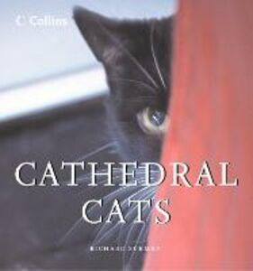 Foto Cover di Cathedral Cats, Ebook inglese di Richard Surman, edito da HarperCollins Publishers