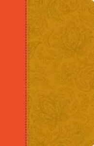 Holy Bible: Paisley Tan Thinline Edition - cover