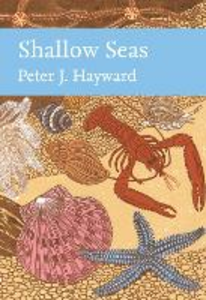 Ebook in inglese Shallow Seas Hayward, Peter