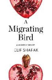 A Migrating Bird