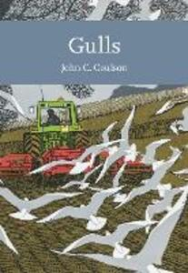 Gulls - Professor John C. Coulson - cover