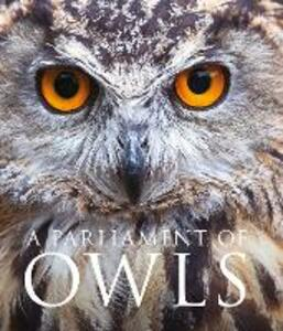 A Parliament of Owls - Mike Unwin - cover