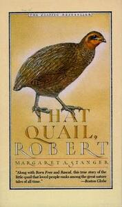 That Quail, Robert - Margaret A. Stanger - cover